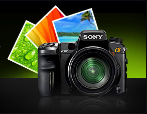 we make sure the best photography is included in each site we design